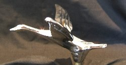 Small / Scooter Mascots